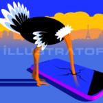 Smombie-ostrich-Autruche-avestruz