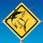 Marlin-Espadon-pez espada-swordfish