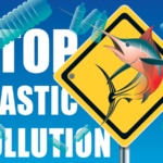 "<span itemprop=""name"">Stop Plastic-save the sea-polución-pollution</span>"